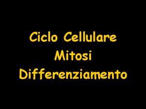 Ciclo Cellulare Mitosi Differenziamento Ciclo Cellulare Ciclo cellulare