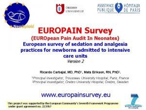 EUROPAIN Survey EUROpean Pain Audit In Neonates European