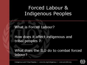 Forced Labour Indigenous Peoples What is Forced Labour