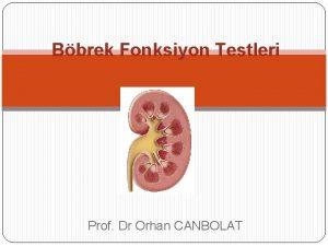 Bbrek Fonksiyon Testleri Prof Dr Orhan CANBOLAT Bbrek