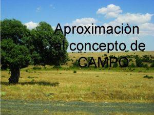 Aproximacin al concepto de CAMPO El campo de