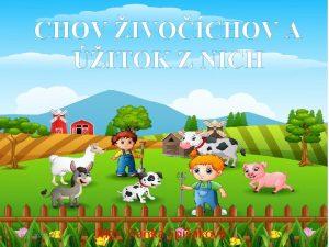 CHOV IVOCHOV A ITOK Z NICH 31 10