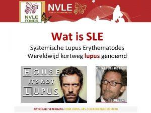 Wat is SLE Systemische Lupus Erythematodes Wereldwijd kortweg