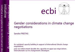 european capacity building initiative ecbi european capacity building
