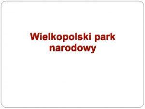 Wielkopolski park narodowy LOGO WPN Okrgy barwny znak