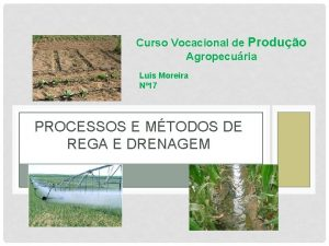 Curso Vocacional de Produo Agropecuria Luis Moreira N