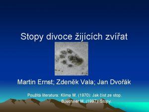Stopy divoce ijcch zvat Martin Ernst Zdenk Vala