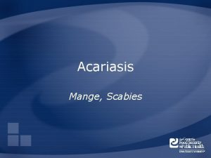 Acariasis Mange Scabies Overview Organism History Epidemiology Transmission