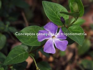 Conceptos generales de trigonometra CONCEPTOS GENERALES DE TRIGONOMETRAparte