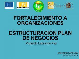 FORTALECIMIENTO A ORGANIZACIONES ESTRUCTURACIN PLAN DE NEGOCIOS Proyecto