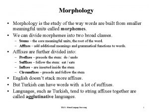 Morphology Morphology is the study of the way