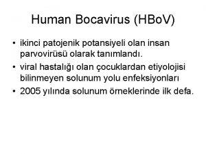 Human Bocavirus HBo V ikinci patojenik potansiyeli olan