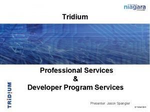 Tridium Professional Services Developer Program Services Presenter Jason