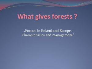 What gives forests Forests in Poland Europe Characteristics