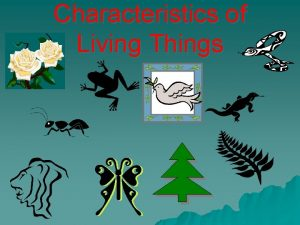 Characteristics of Living Things 1 Characteristics of Living