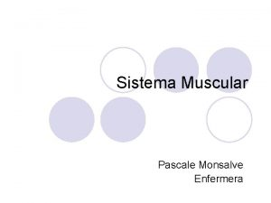 Sistema Muscular Pascale Monsalve Enfermera Sistema Muscular l