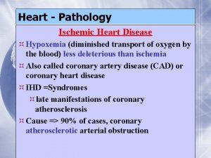 Heart Pathology Ischemic Heart Disease Hypoxemia diminished transport