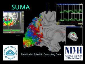 SUMA Statistical Scientific Computing Core 722004 SSCCNIMH 2