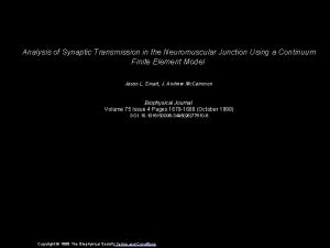 Analysis of Synaptic Transmission in the Neuromuscular Junction