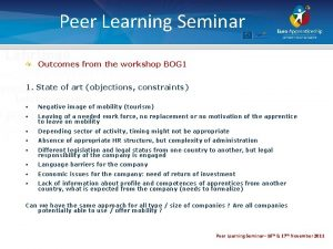 Peer Learning Seminar Outcomes from the workshop BOG