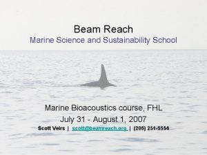 Beam Reach Marine Science and Sustainability School Marine