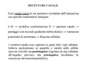 RECETTORI CANALE Sono canali ionici la cui apertura
