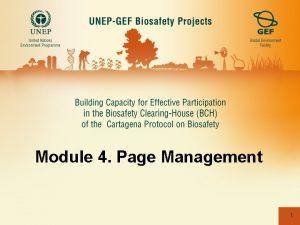 Module 4 Page Management 1 MODULE 4 Page