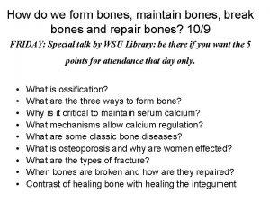 How do we form bones maintain bones break