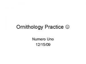 Ornithology Practice Numero Uno 121509 Order family common