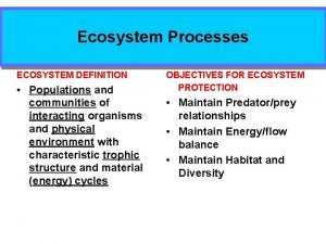 Ecosystem Processes ECOSYSTEM DEFINITION Populations and communities of