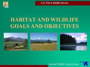 U S Fish Wildlife Service HABITAT AND WILDLIFE