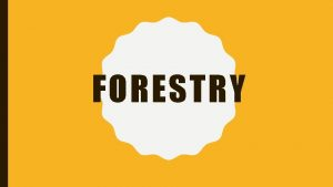 FORESTRY STEPS TO SUCCESSION Succession The natural way