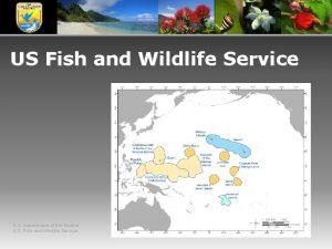 US Fish and Wildlife Service U S Department