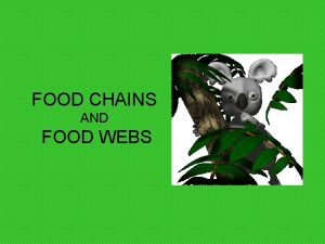 FOOD CHAINS AND FOOD WEBS Words to Know