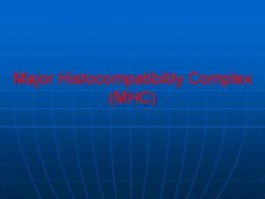Major Histocompatibility Complex MHC Major Histocompatibility Complex MHC