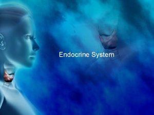 Endocrine System Endocrine System Regulates overall metabolism homeostasis