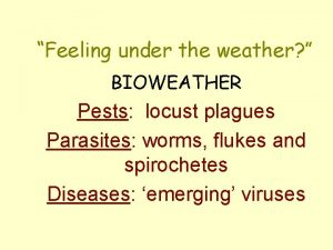Feeling under the weather BIOWEATHER Pests locust plagues