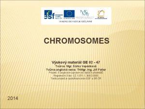 CHROMOSOMES Vukov materil GE 02 47 Tvrce Mgr