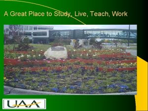 A Great Place to Study Live Teach Work