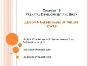 CHAPTER 19 PRENATAL DEVELOPMENT AND BIRTH LESSON 1