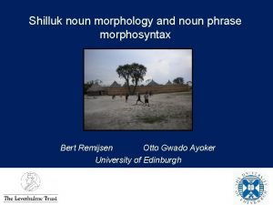Shilluk noun morphology and noun phrase morphosyntax Bert