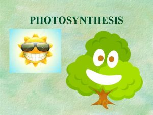 PHOTOSYNTHESIS PHOTOSYNTHESIS Autotrophic Process Plants and other photosynthetic