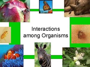 Interactions among Organisms Types of Interactions Intraspecific relationship