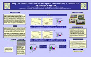 LongTerm Enriched Environment But Not Cage Size Improves