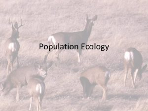 Population Ecology Populations Remember a population is a