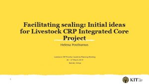 Facilitating scaling Initial ideas for Livestock CRP Integrated