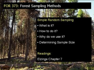 FOR 373 Forest Sampling Methods Simple Random Sampling