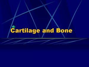 Cartilage and Bone 1 Cartilage organCartilage tissueperichondrium 1