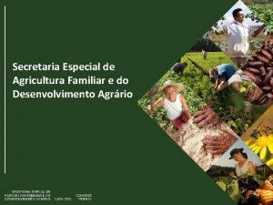Secretaria Especial de Agricultura Familiar e do Desenvolvimento