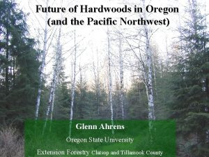 Future of Hardwoods in Oregon and the Pacific